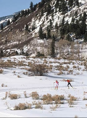 cross country skiing and skate technique lessons